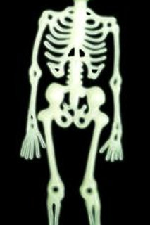 Esqueleton Neon