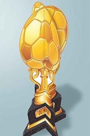 Taça de Futebol c/ 02