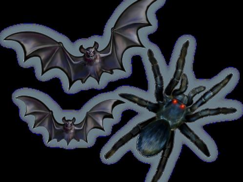 Kit Morcego e Aranha c/ 03
