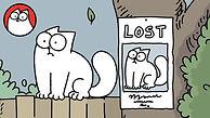 MissingCat_Still.jpg