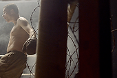 BIFF Short | Boxer on Wilderness