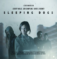 BIFF Feature | Sleeping Dogs
