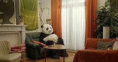 Panda_Still.jpg