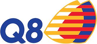 IDS_Q8_logo.png