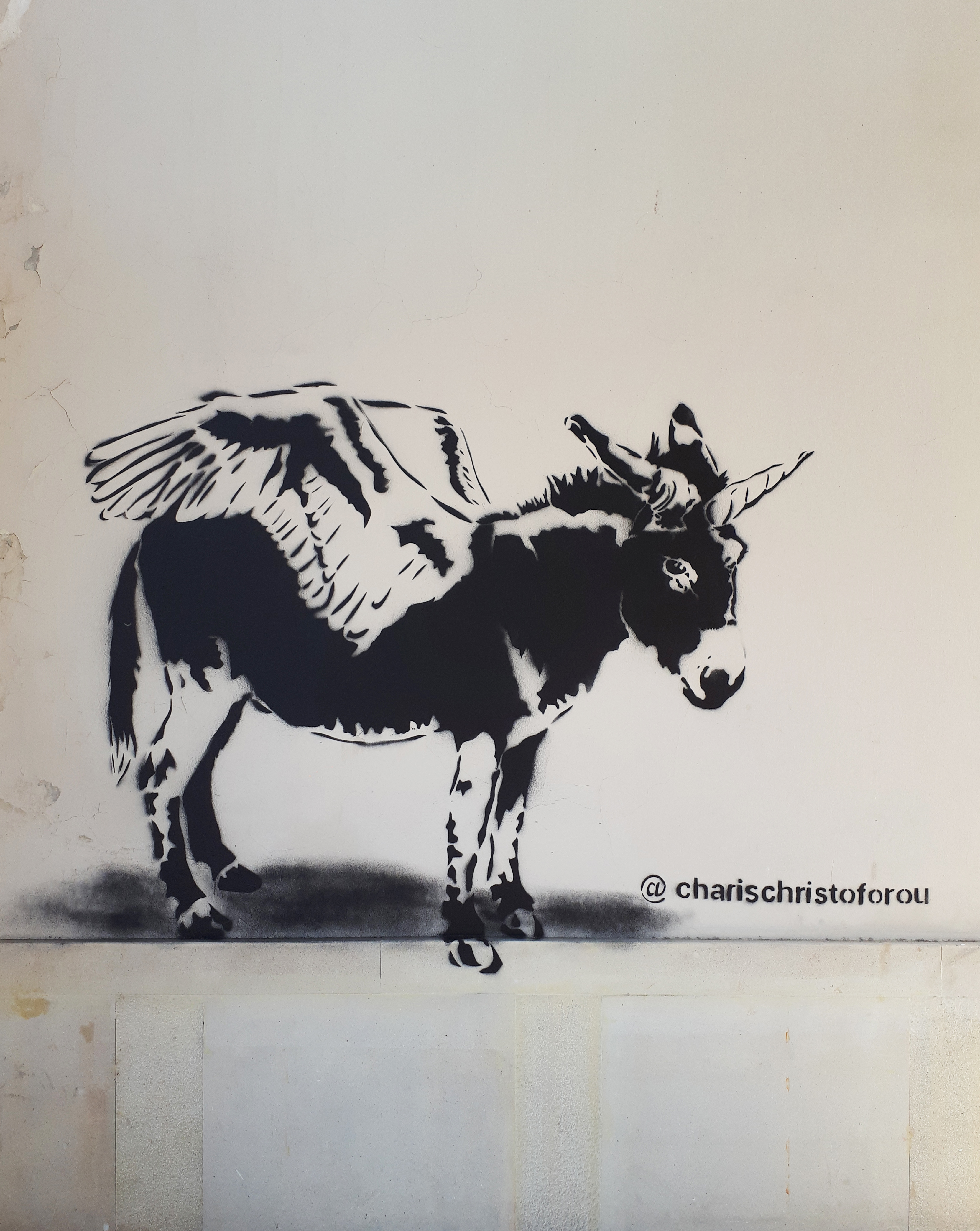"""""""The donkey unicorn"""""""