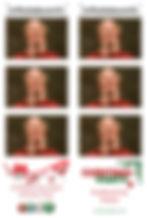 Christmas examples.jpg
