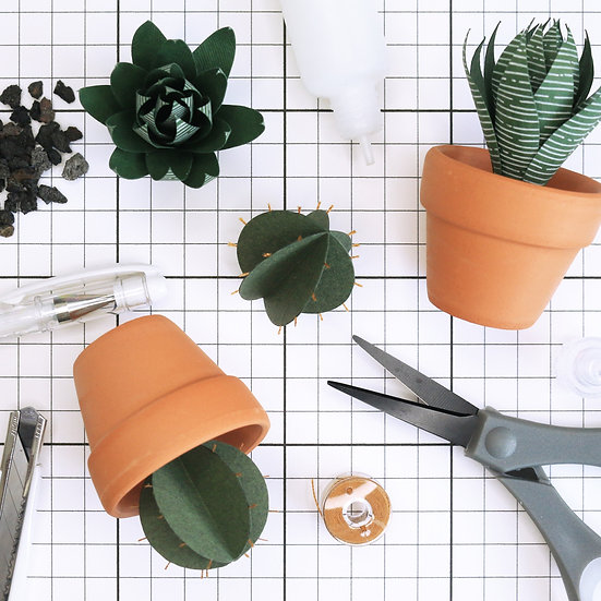 Miniature Paper Cactus Workshop (25 Sep)