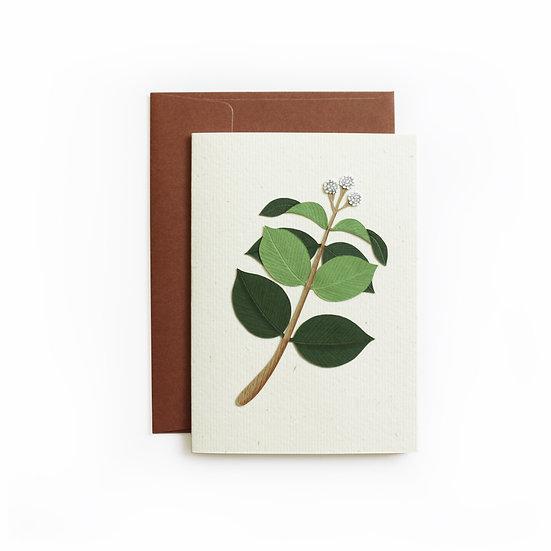 A6 Leaf Card 2