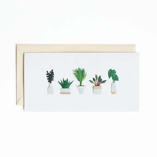 Long Mini Plants Greeting Card 1