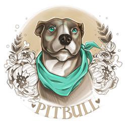 pitbull1