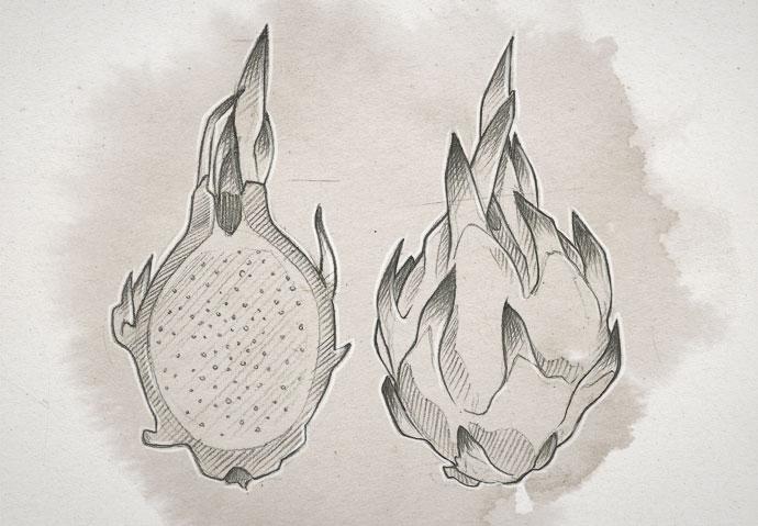 dragon-fruit2