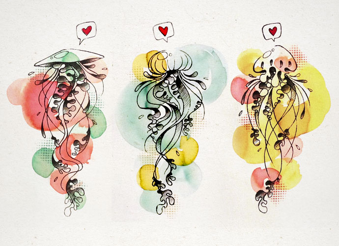jellyfishes5