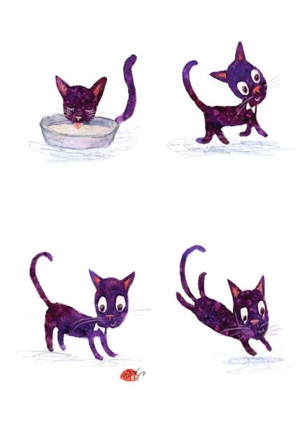 catt.jpg