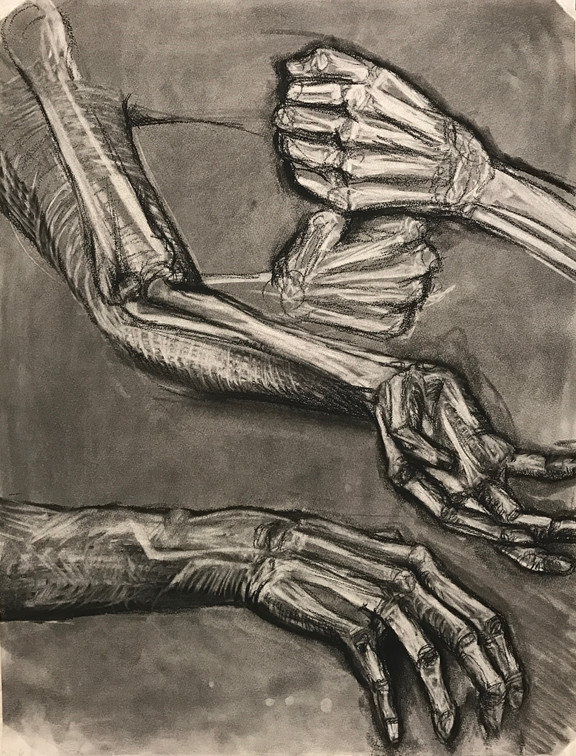 """Skeletal Insertion"". 2016. Charcoal. 24"" X 36""."