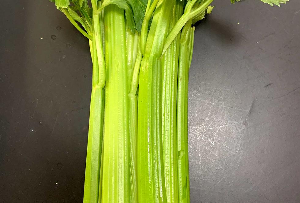 Celery - USA