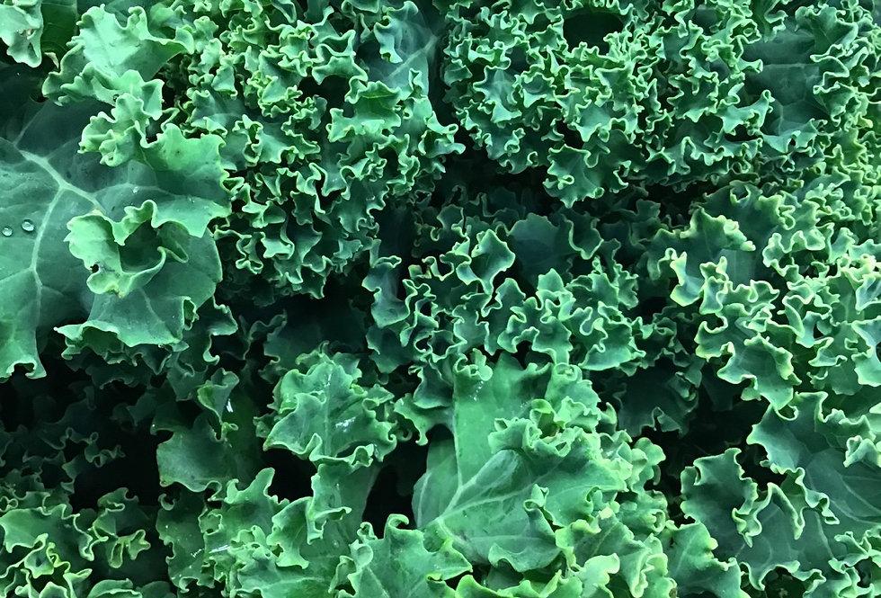 Kale, organic