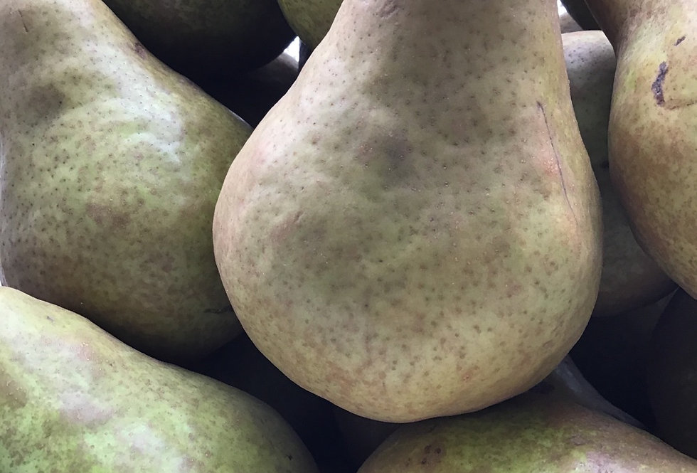Bosc Pears, On