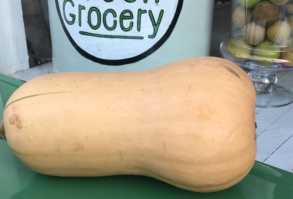 Butternut Squash, ON