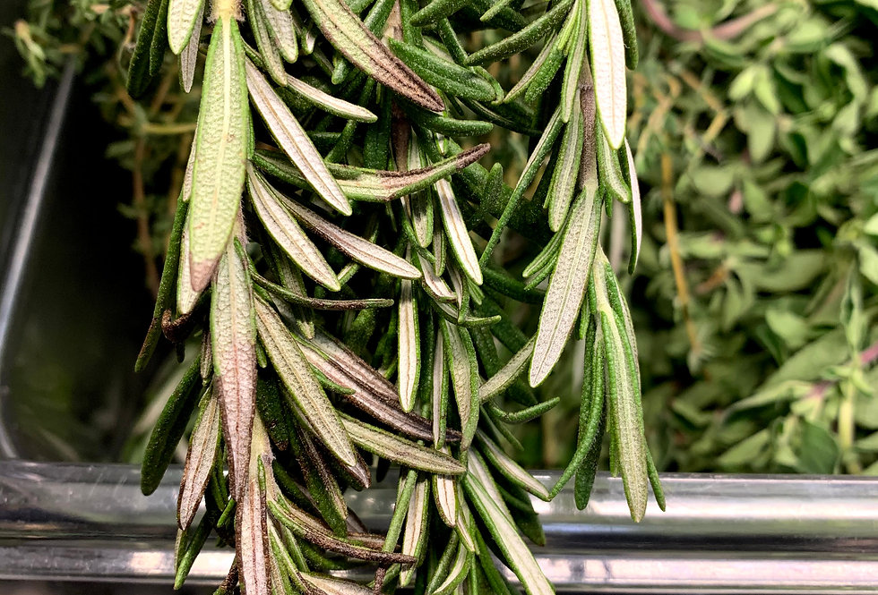 Fresh rosemary, bunched