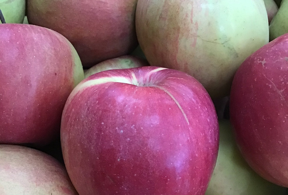 Ontario Northern Spy Apples