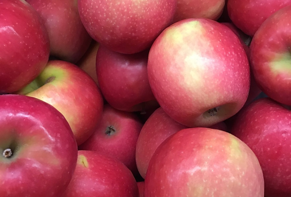 Pink Lady Apples, ON - each