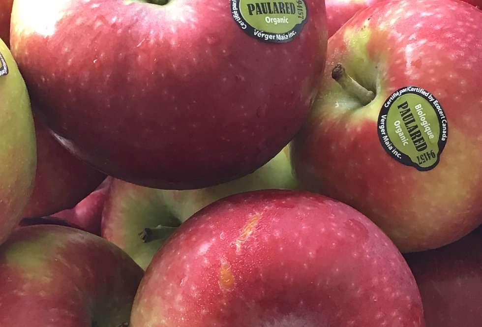 Organic Paula Red Apples
