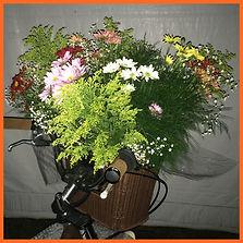 manuseio flores cesta bouquet