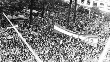 9 - Manifestacion del PTE de Andalucia.j