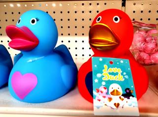 Love Duck.jpg