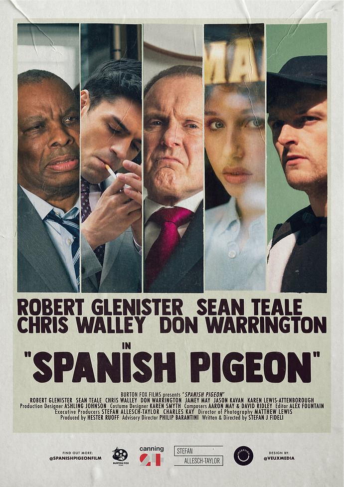 Spanish Pigeon