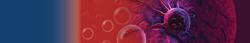 Banner_célula_roja-01.png