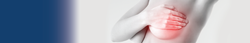 Banner Busto-01.png