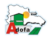 Adofa asegura abastecimiento de arroz