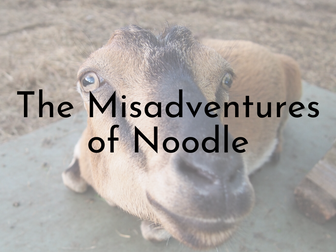 The Misadventures of Noodle