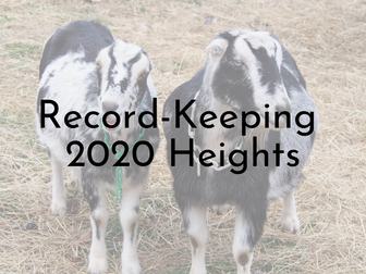 Record-Keeping - Heights of Does