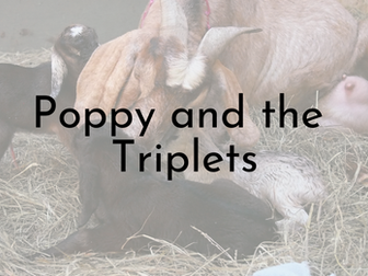 Poppy and the Triplets