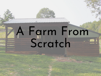 A Farm from Scratch