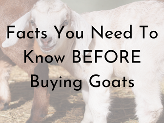 New to Goats? Read This - a Few Simple Facts