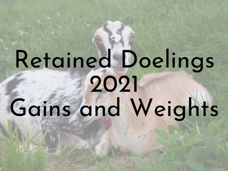 Retained Doelings 2021 Gains and Weights
