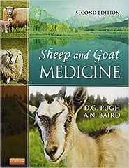 SheepandGoat.jpg