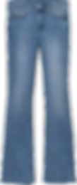 female bottoms (2).png