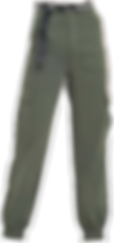 female bottoms (5).png