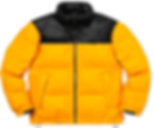male outerwear (12).png