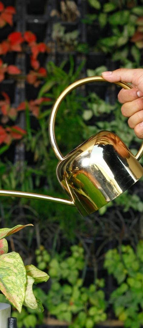 BTIL Vintage Watering