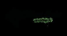 Logo_Torben_ohne Hintergrund.png