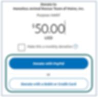 PayPalNotesSelectPayment.PNG