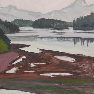 Alaska Tidal Plain 2