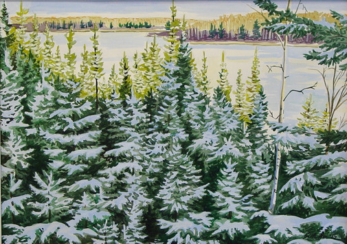 John's Winter View