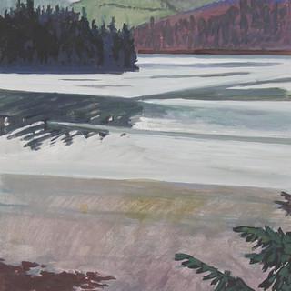 Alaska Tidal Plain