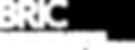 logotipo_bric.png